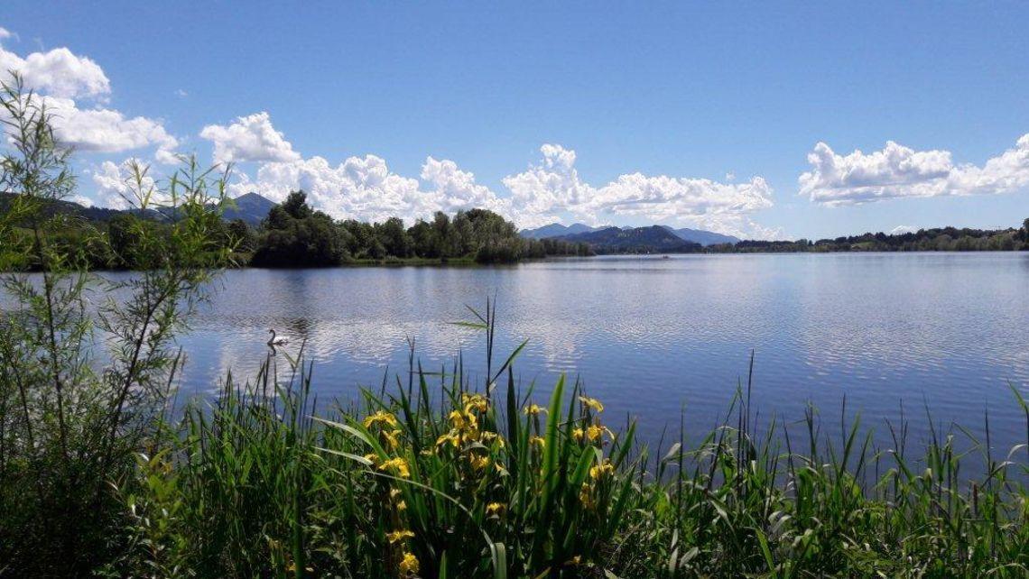 Badeplatz am Rottachsee in Bisseroy  - © Tanja von Heintze , Kur- und Tourismusbüro Oy-Mittelberg