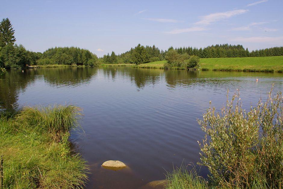Sticher Weiher in Oy-Mittelberg  - © Werbe Blank , Kur- und Tourismusbüro Oy-Mittelberg