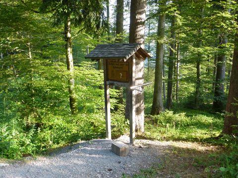 Erlebniswanderweg am Hündle  - © Hündle Erlebnisbahnen , Kur- und Tourismusbüro Oy-Mittelberg